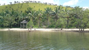 Island Resort Palawan in Coron for Sale! Ref# 0000301