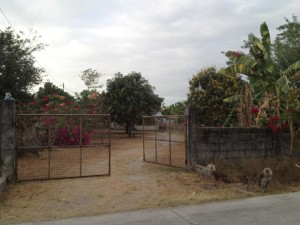 farm in bamban tarlac with rest house