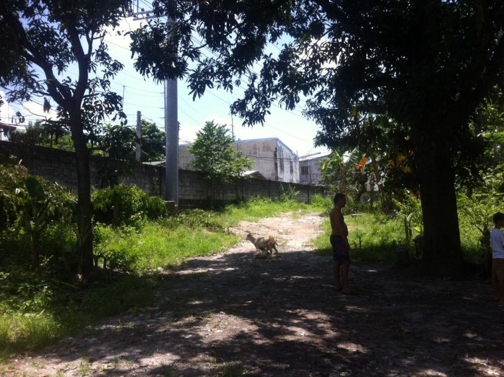 1.13 Hectares Rawland For Sale Angeles City #0000867